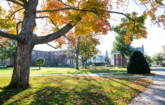 Campus fall